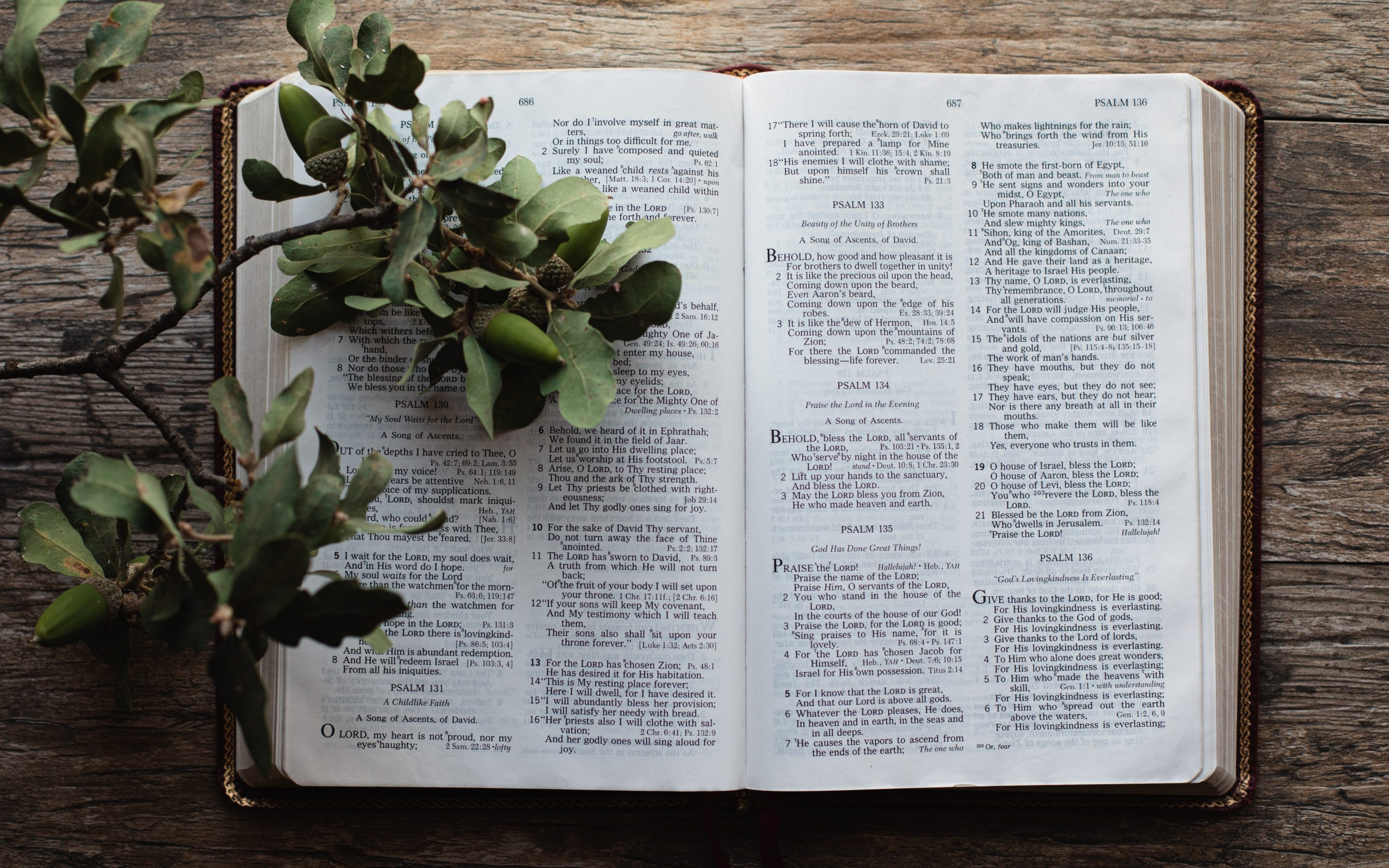 Helpful Bible Study Tips for Beginners